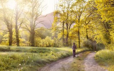 Caminar regenera el cerebro, alivia la tristeza y el estrés